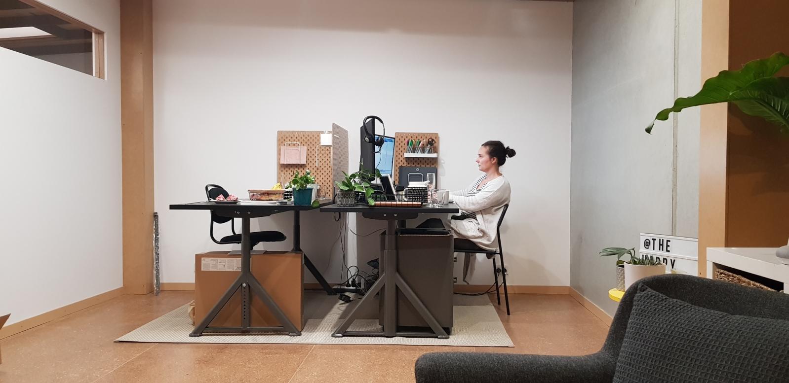 Stacey Micallef Working on a WordPress Website